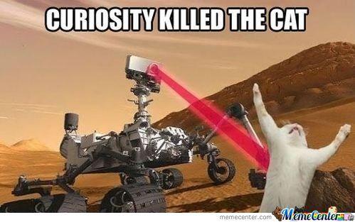curiosity-killed-the-cat_o_630003